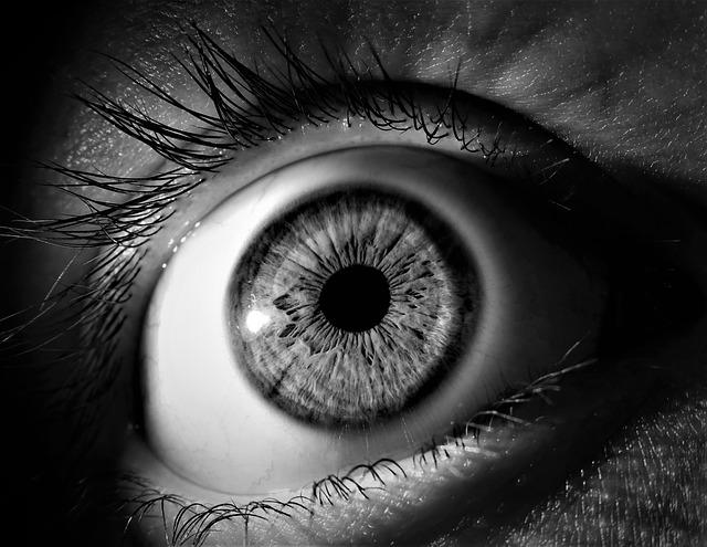Mon journal lunaire du 7 janvier 1019 – Vision –